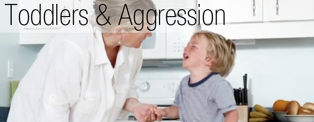 Toddlers and Aggression